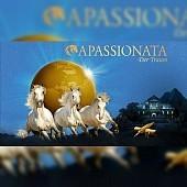 APASSIONATA: Der Magische Traum