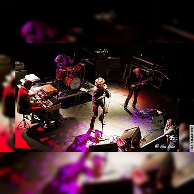 The Doors in Concert - in concert