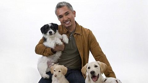 "Cesar Millan - ""It's All About Family"" Tour 2019"