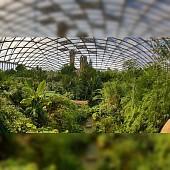 Zoo Leipzig inkl. Gondwanaland - Gutschein gültig vom 21.03.16 - 31.10.16